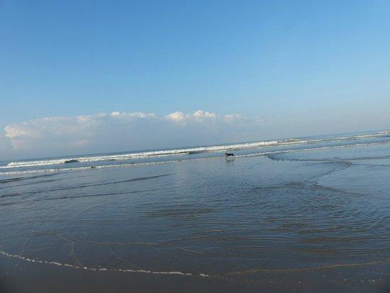 Villas Hermosas : Chasing waves