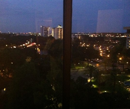 Hilton Orlando Lake Buena Vista: A night view from 9th floor