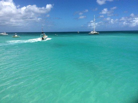 De Palm Tours: Atlantis Submarines Expedition: Going to the Seaworld Explorer