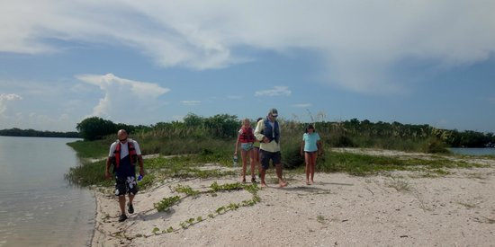 Capt. Ron's Awesome Everglades Adventures : Capt Ron gives a lesson in turtle-ology
