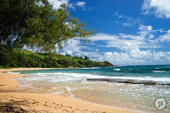 Kauai Photo Tours : Moloaa Bay, HI