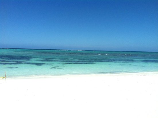 PavoReal Beach Resort Tulum: Beautiful water