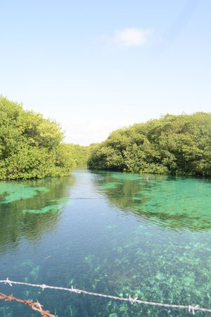 PavoReal Beach Resort Tulum: Casa Cenote