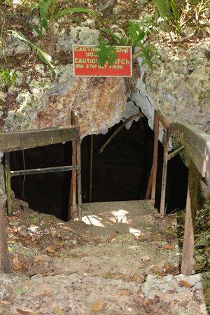 PavoReal Beach Resort Tulum: Entrance to Cenote