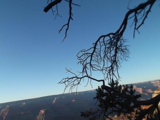 Thunderbird Lodge : Sunset at Grand Canyon