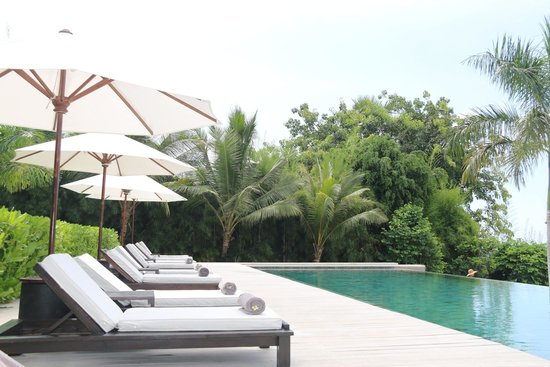 The Lombok Lodge : lovely pool