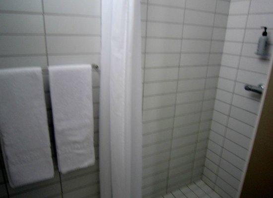 Icelandair Hotel Akureyri: Shower; toilet was on opposite side of room