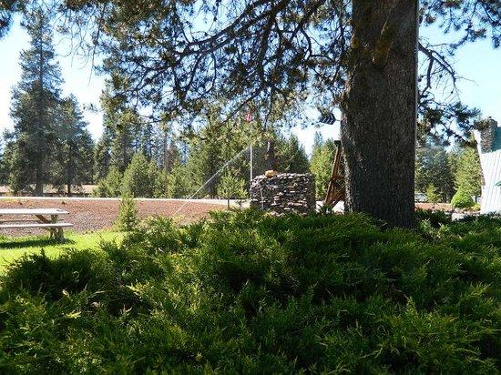 Eagle Crater Lake Inn: green