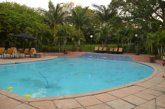 Protea Hotel by Marriott Umfolozi River : Pool