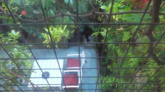 Jacaranda, studio & suite: viste desde la ventana a patio interior