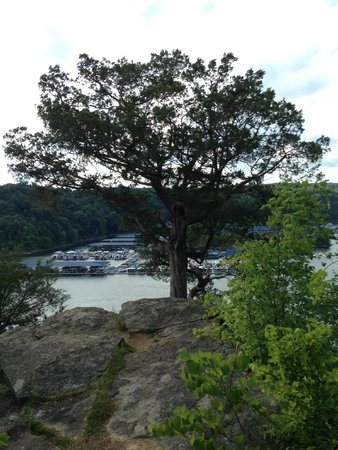 Lake Cumberland State Resort : Lookout point to the north of the resort (Walking distance)