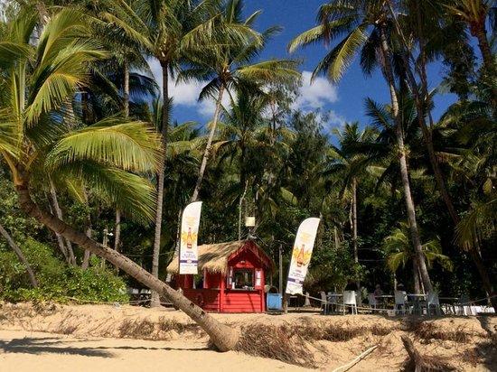 The Beach Shack Cairns Restaurant Reviews Phone Number Photos Tripadvisor