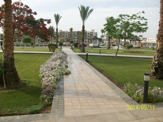 Dana Beach Resort: вид с балкона