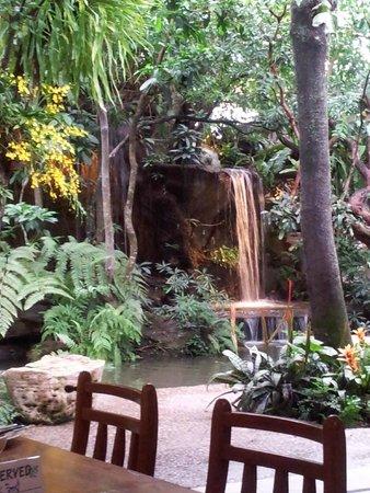 Khaomao-Khaofang Restaurant : Waterfall at the back pond at Khaomao-Khaofang