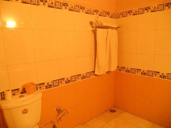 The Kashmir House: batahroom with shower