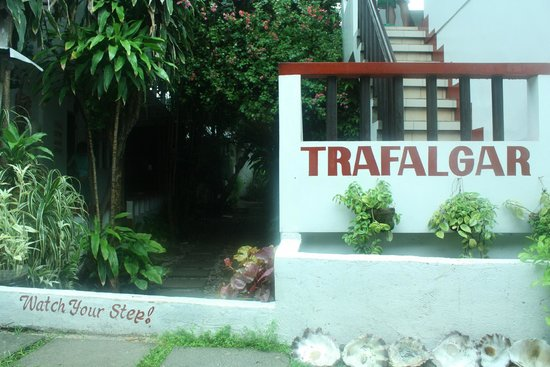 Trafalgar Cottages : Overall look