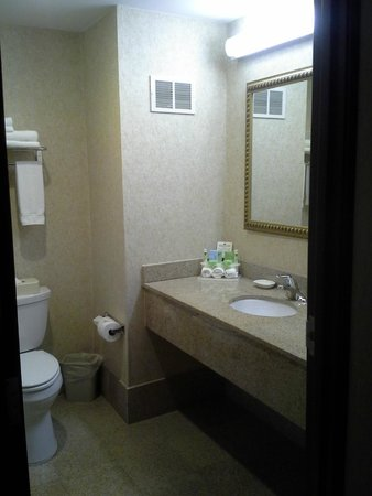 Holiday Inn Express Hotel & Suites Newton Sparta: lots of space