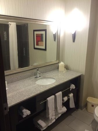 Comfort Suites Greenville: roomy bathroom counter