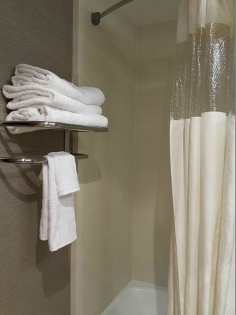 Holiday Inn Wilkes Barre East Mountain: Towel Rack