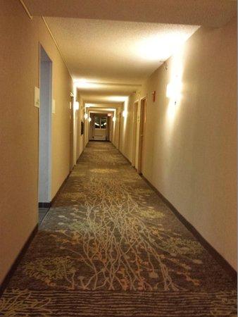 Holiday Inn Wilkes Barre East Mountain: Hall on 5th Floor