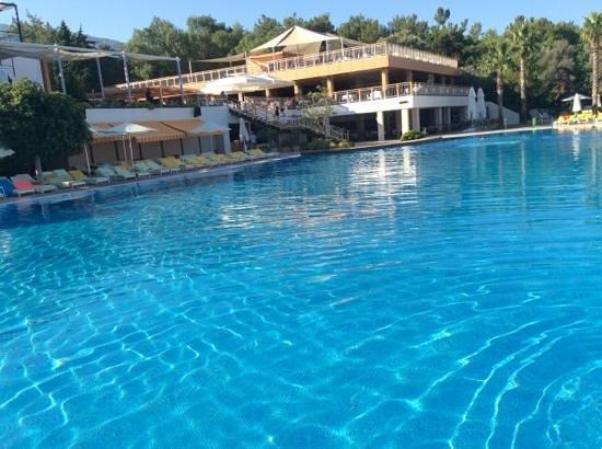 Isil Club Bodrum: Vue piscine principal et restaurant