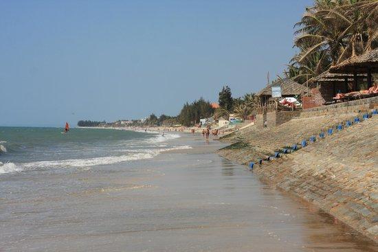 Blue Waves (Tien Dat) Resort: береговая линия отеля