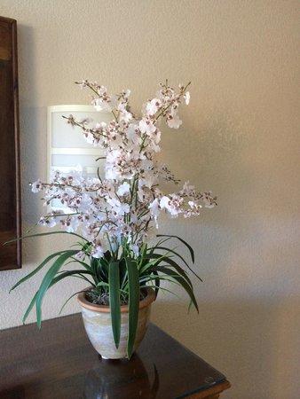 Rodeway Inn and Suites: Flowers in room