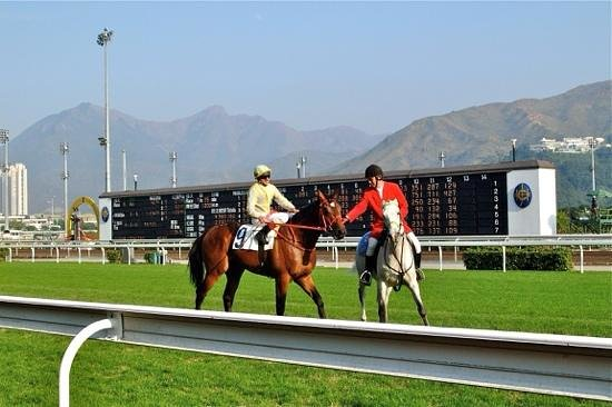 Happy Valley Racecourse: Working together making good money!