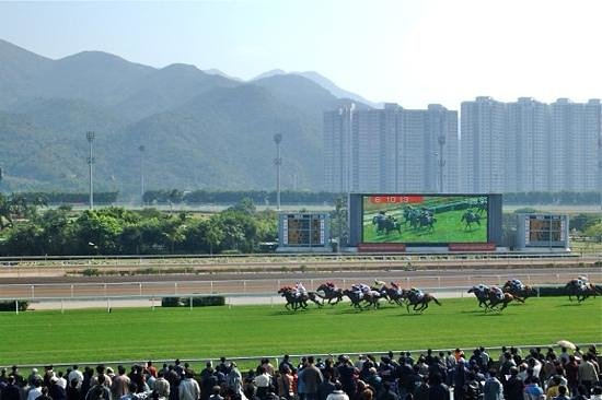 Happy Valley Racecourse: Horse racing in real action!