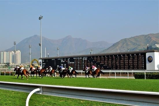 Happy Valley Racecourse: Race in action!