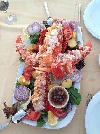 Seven Hills Restaurant: Delicious lobster!