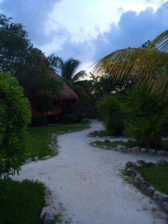Hotel Villas Delfines: Hermoso