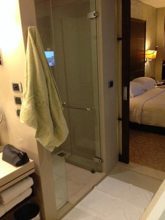 Pullman Bangkok Grande Sukhumvit: Bath Room & Room