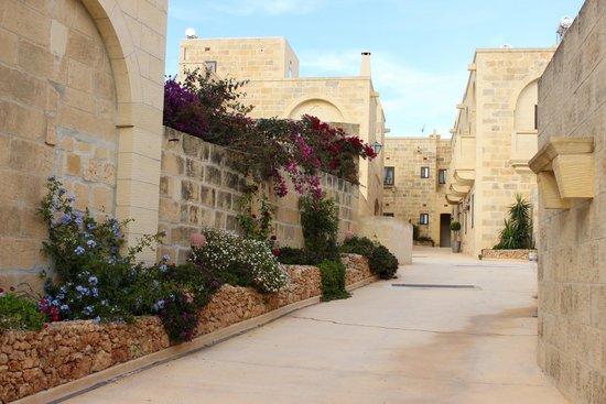 Gozo Hills Bed and Breakfast : ingresso