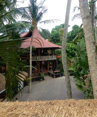 The Yoga Barn - Day Classes: The Yoga Barn - seen from Garden Kafe