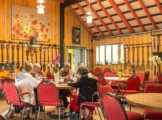 East Ruston Old Vicarage Garden tearoom