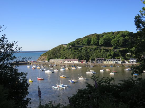 Pentower: Fishguard bay view