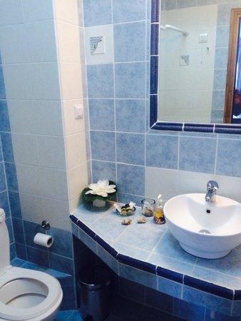 Archodiko Toliadi: bathroom