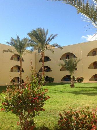 Desert Rose Resort : корпус