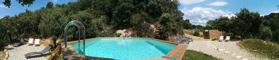 La Maison D'Edouard : La piscine et ses 2 plages