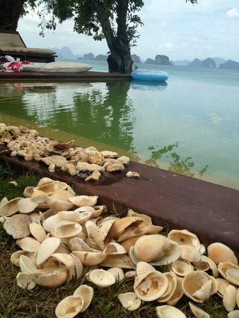 Koyao Island Resort : By the pool - kids collected lots of shells on the beach