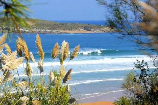 La Curva Escuela de Surf