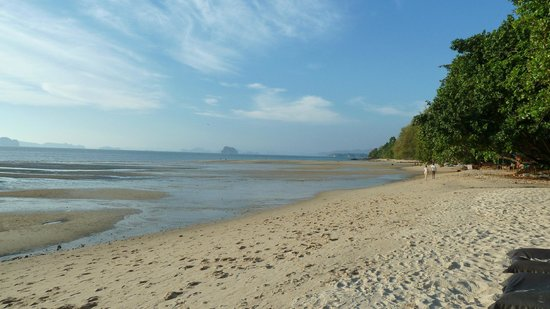 The Tubkaak Krabi Boutique Resort: Hotelstrand