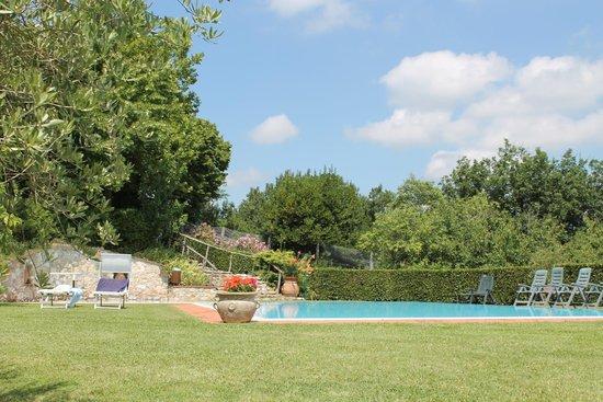 Agriturismo Il Poggiarello : giardino e piscina