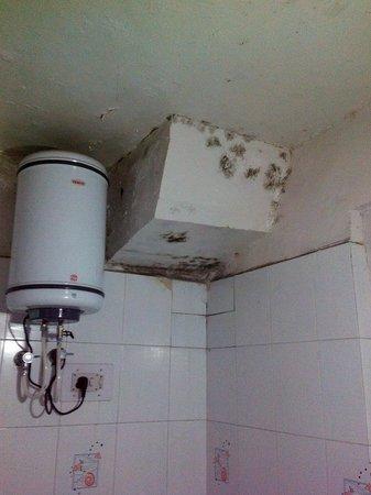 Hotel Vikram: Bathroom