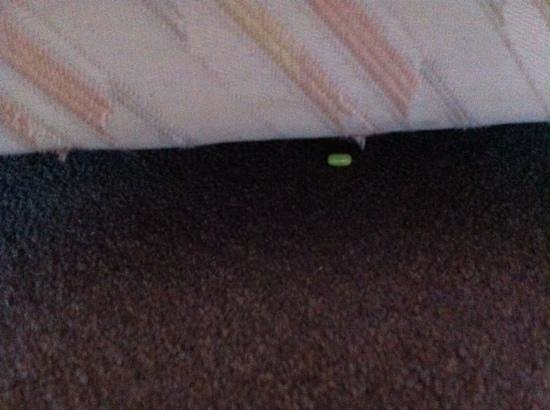 Tivoli Marina Vilamoura : tablet under bed from previous ocupant