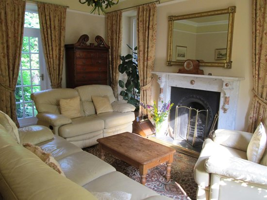 Afon Rhaiadr Bed and Breakfast: The lounge