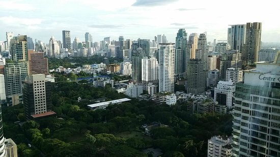 The Okura Prestige Bangkok: view from the club lounge into Lumpini park