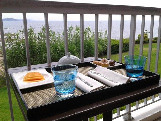 Sofitel Golfe d'Ajaccio Thalassa sea and spa : le balcon de la chambre