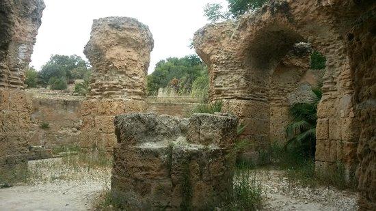 Vincci Flora Park: Carthage